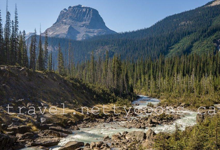 Camrose Alberta Canada